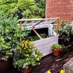 Georgetown Terrace- Cold Frame