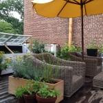 Umbrella Terrace